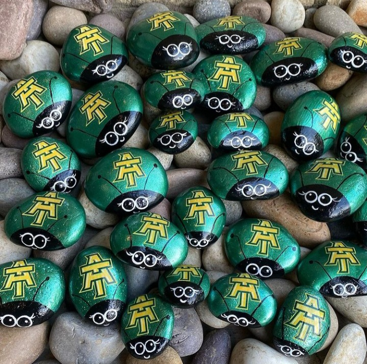 ATU Ladybug Rocks by ATU_rocks
