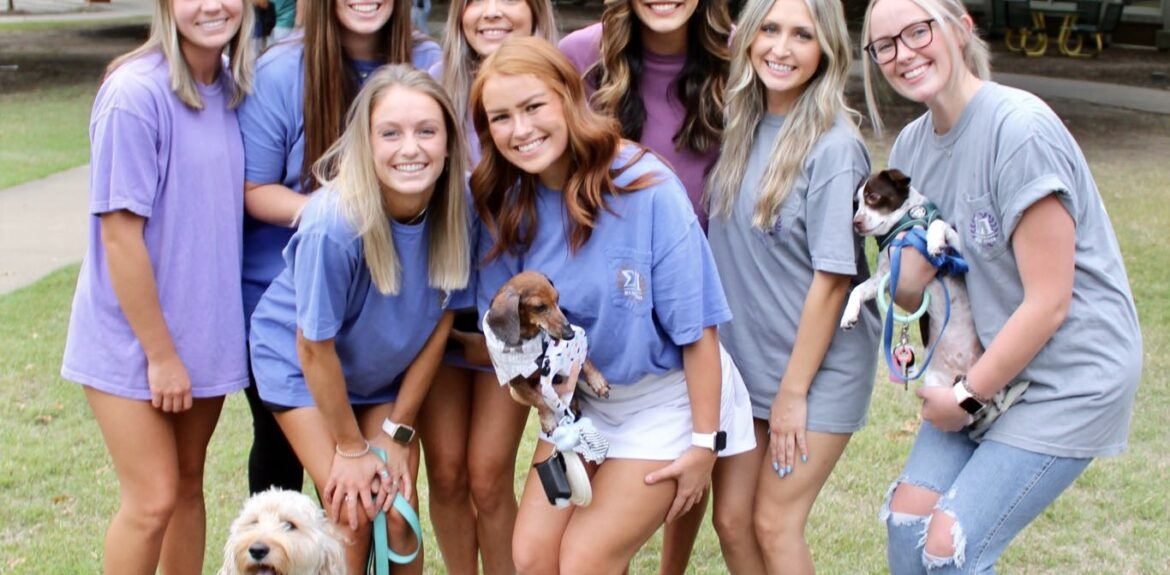 Piper With Some Friends and Some Dogs